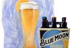 Commercial-Bluemoon-Beer