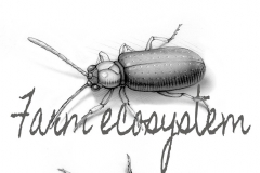 NatSci-Agricultural-Insects