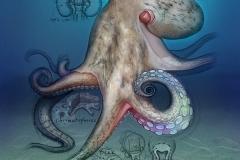 NatSci-Octopus